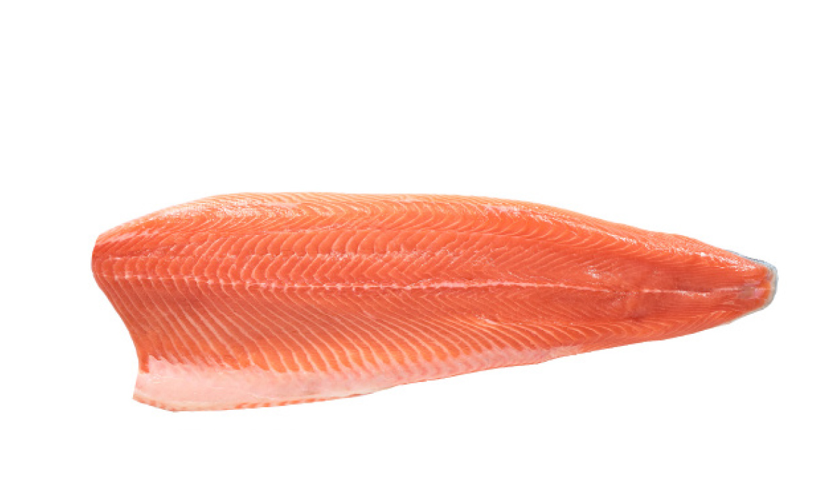 Salmon C-cut fillet