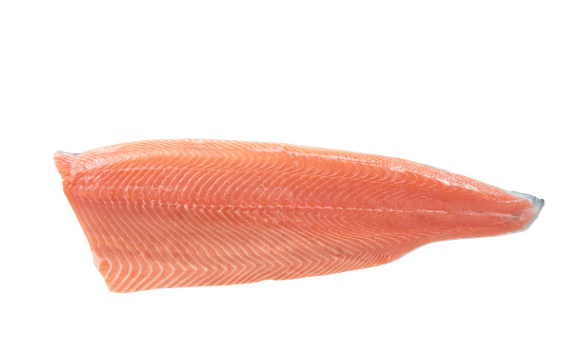 Salmon D-cut fillet
